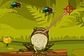 [昆虫を補食するカエルのアクションゲーム]Hungry Frog